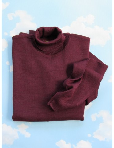 Roll Neck Jumper In Bordeaux